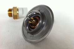 Water thermostat & fan switch RS